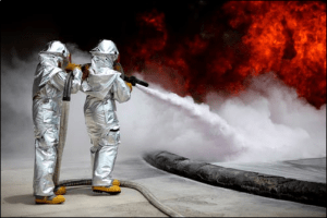 How to Find Professional Pest Control Service?